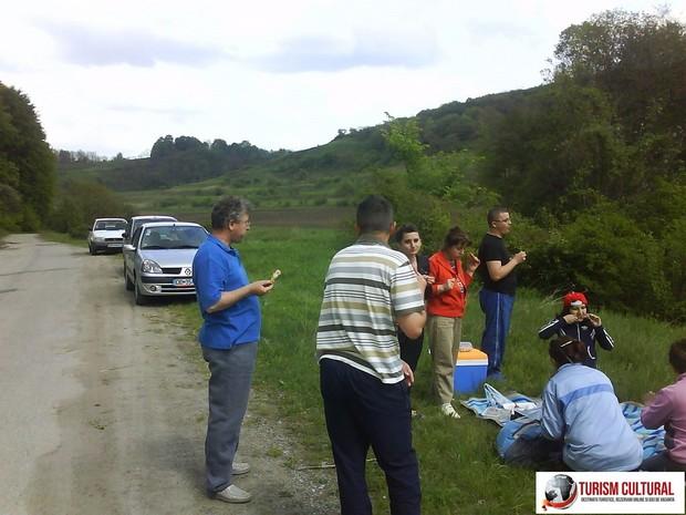 Biertan picnic (la iesirea din comuna)