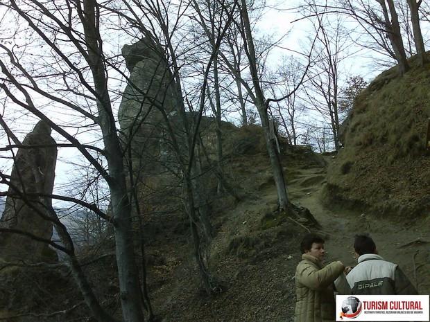 Manastirea Cetatuia Negru Voda poteca spre manastire