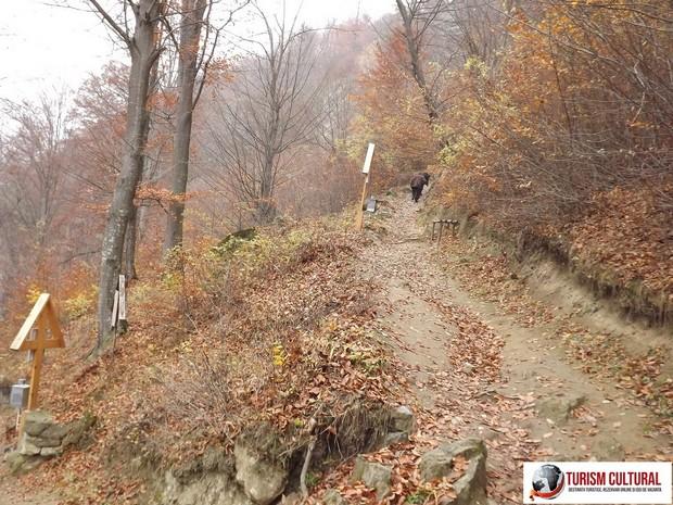 Manastirea Cetatuia Negru Voda drumul spre manastire