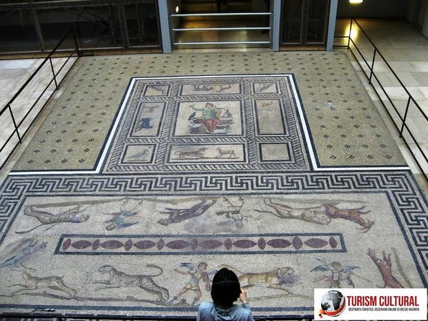 Milet mozaicul aflat in fata agorei de sud