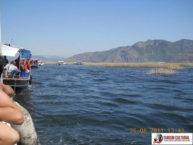 Turcia Dalyan plimbare cu barci prin delta