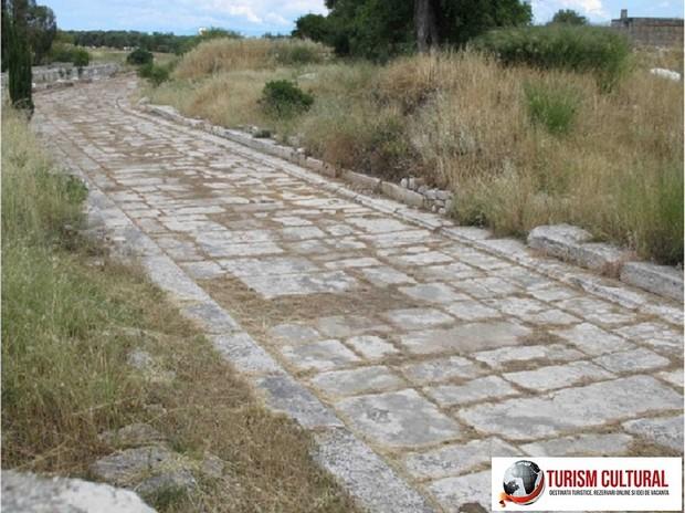 Turcia Didyma oracolul lui Apollo drumul sacru ce ducea pana la orasul antic Milet