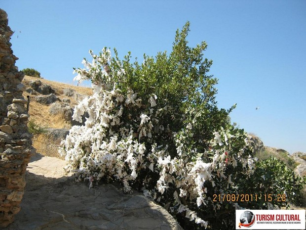 Turcia Efes grota celor 7 tineri (copac cu biletele-rugaciuni)