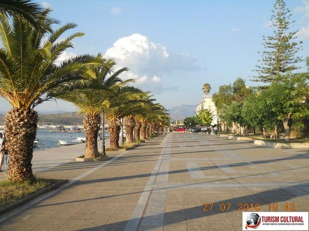 Grecia Nafplio palmieri