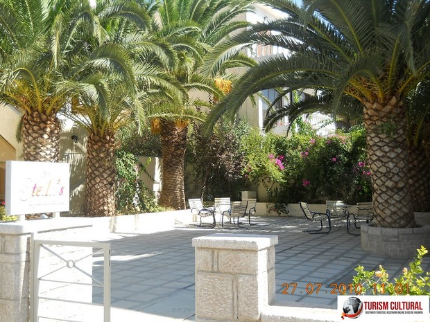 Grecia Tolo palmieri langa plaja