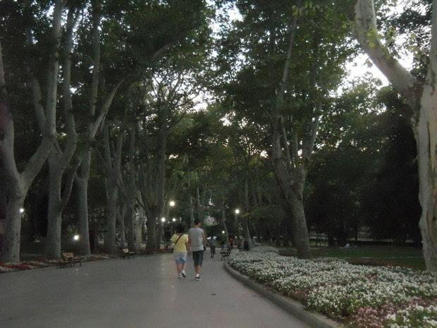 Turism Cultural - Istanbul Parcul Gulhane platani