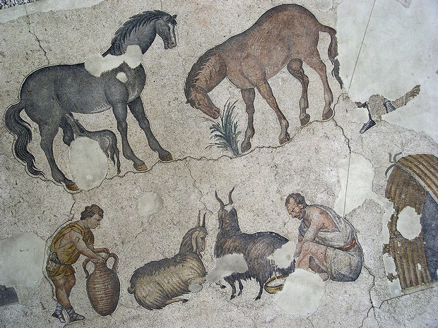 Turism Cultural - Istanbul Marele Palat muzeu mozaicuri romane